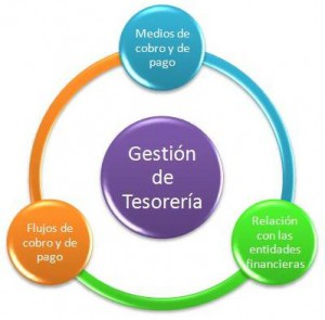 gestion_tesoreria_ciclo
